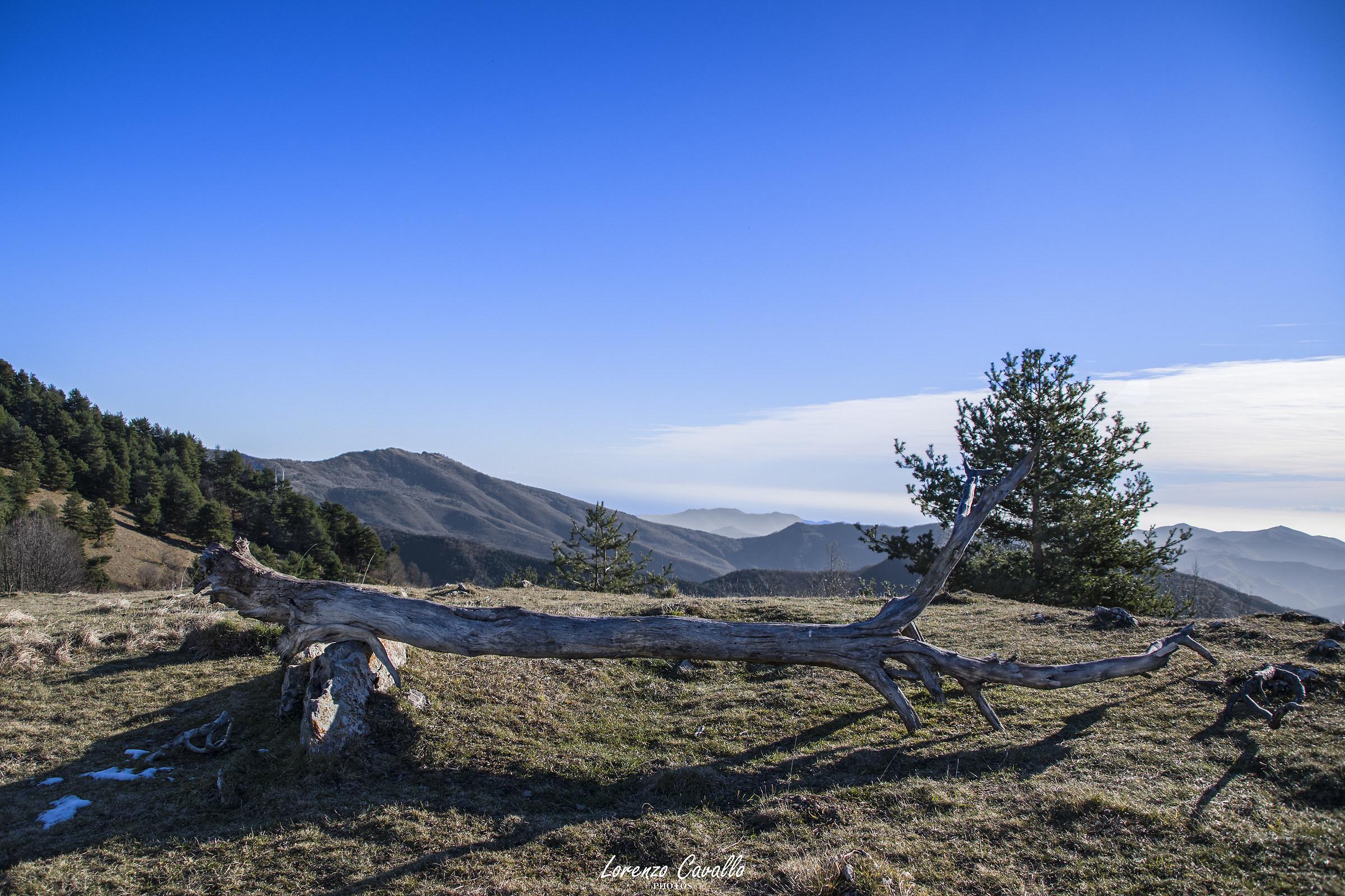 Alta Valle Tanaro...