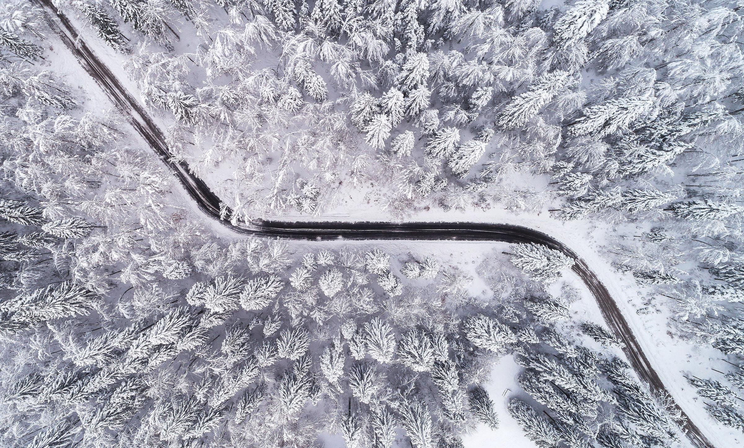 Strada attraverso la foresta di inverno...