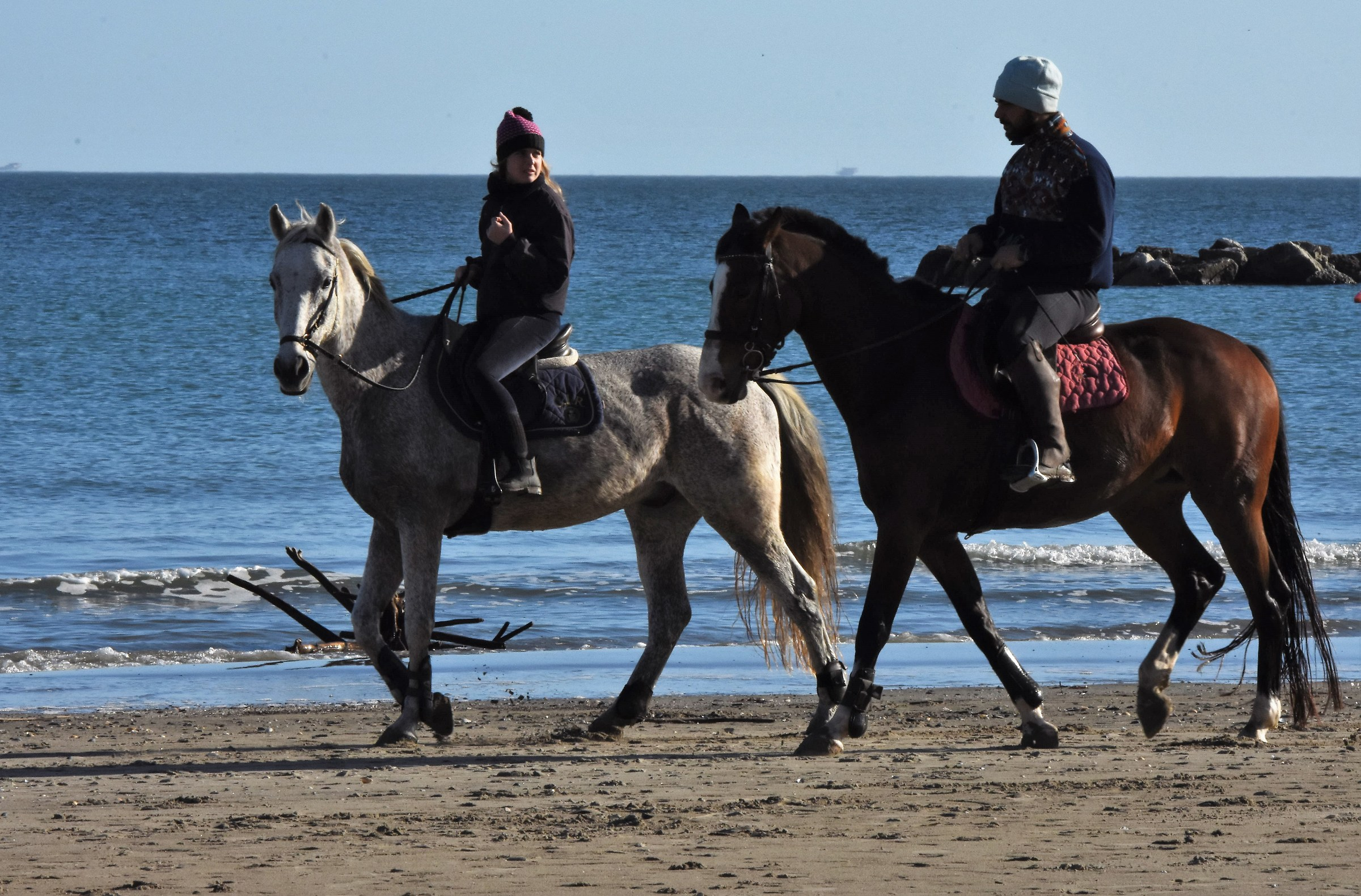 At sea I saw the horses.... and not the surf!! ...