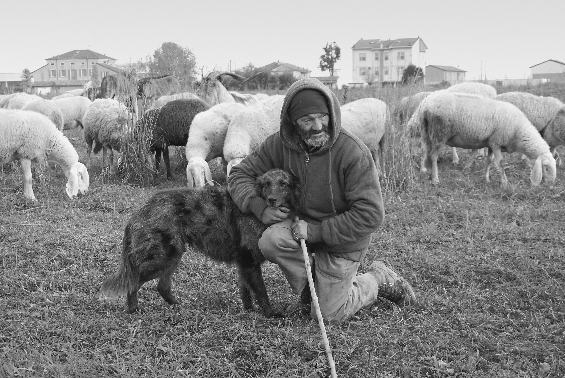 The Shepherd and his dog...