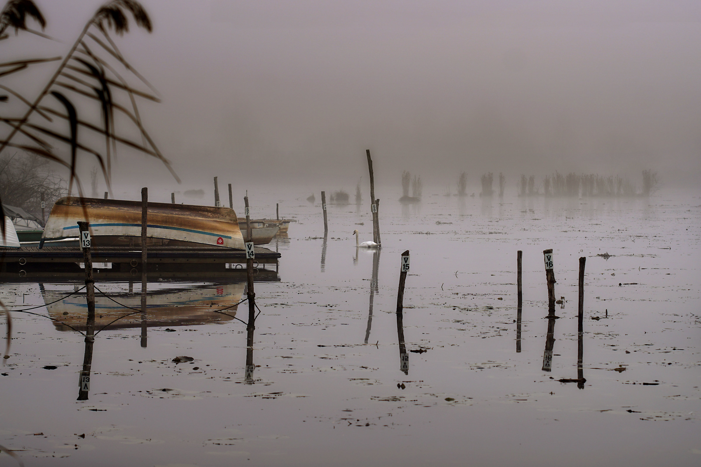 Lake Fimon...