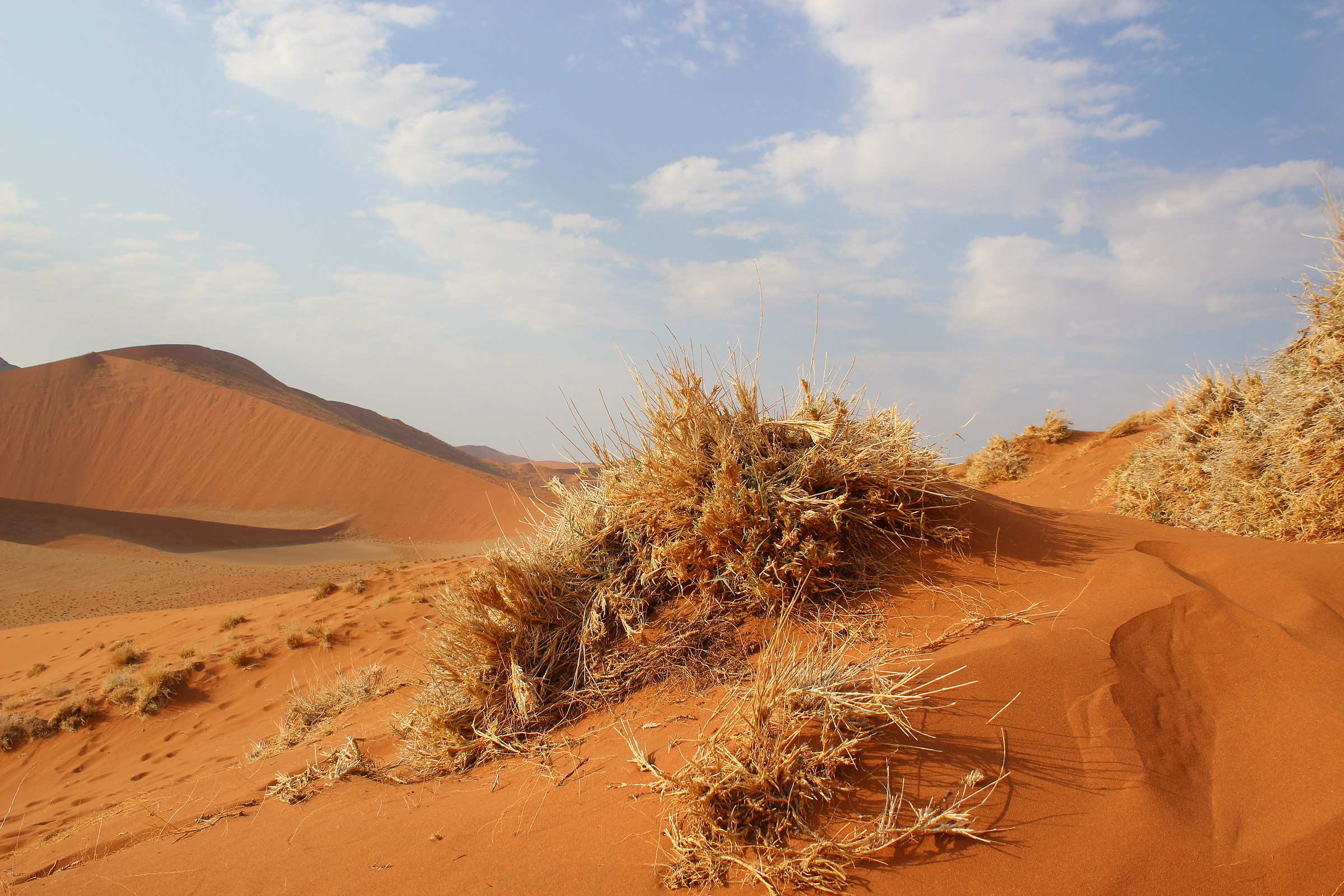 deserto rosso 2...