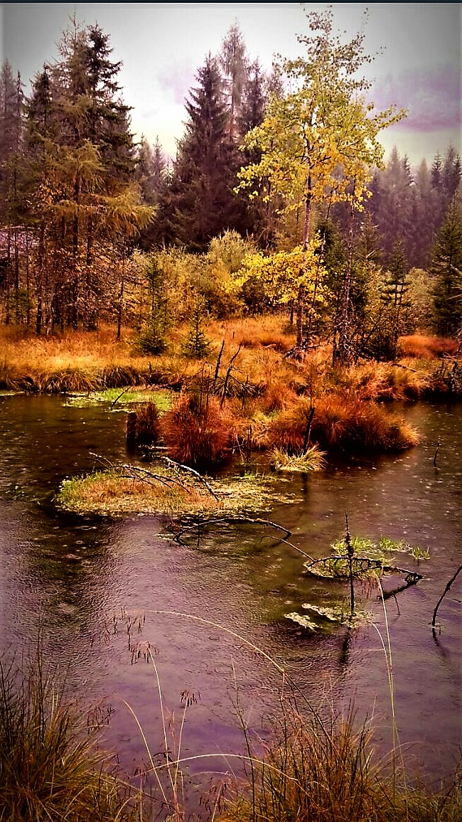 """A little """"autumn in South Tyrol-10-..."""