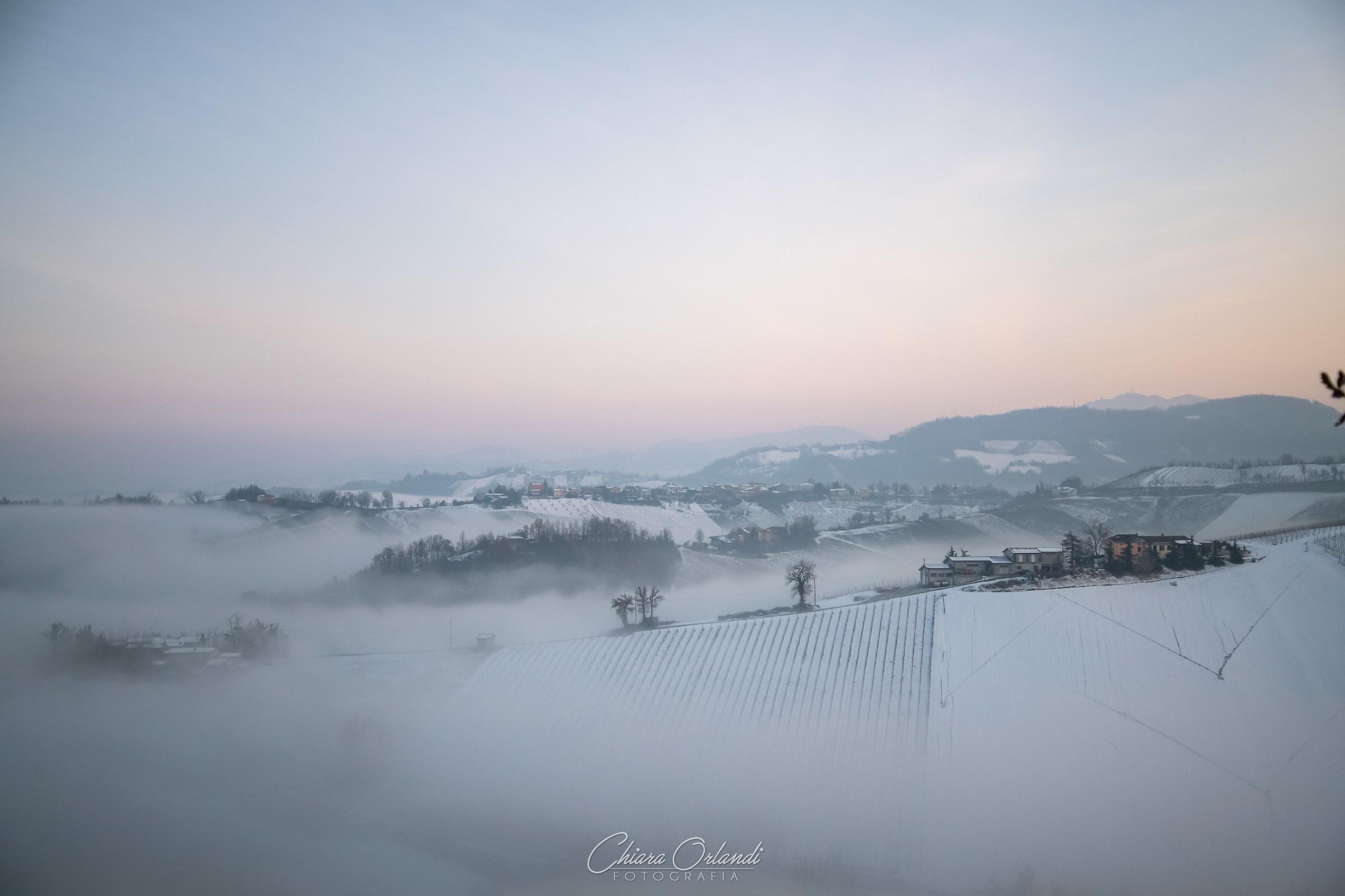 Outrun the Fog...