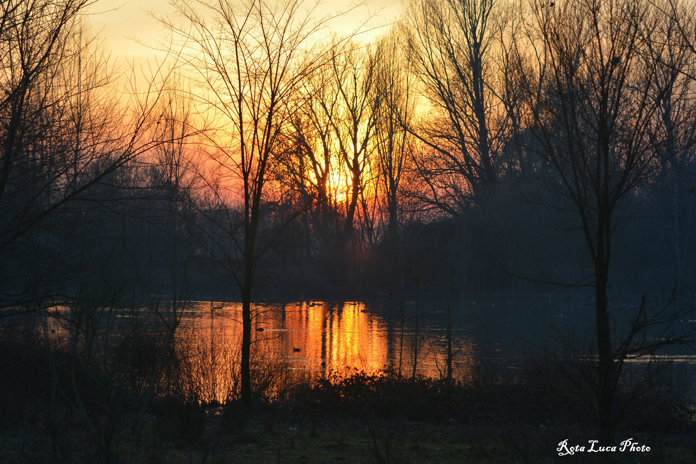 Sunset at the pond...