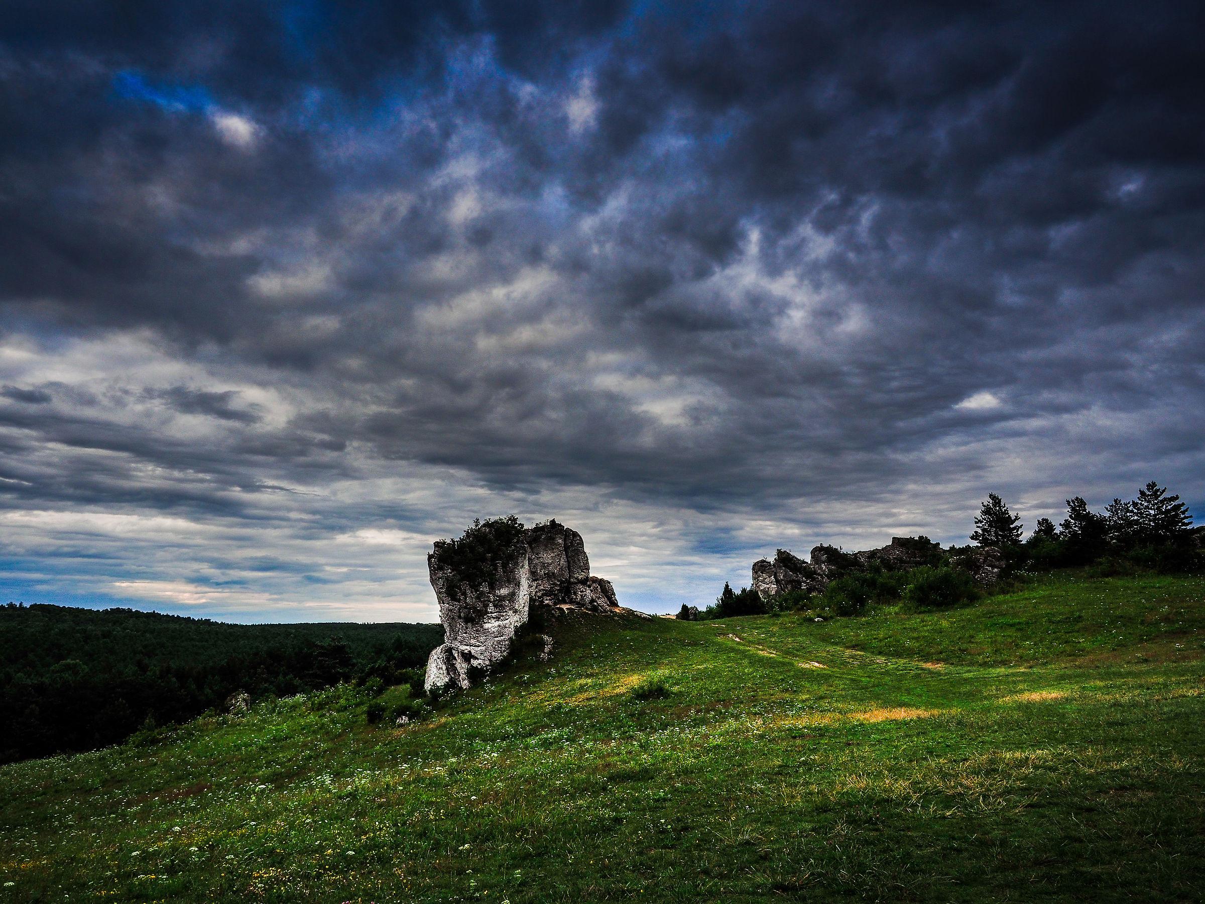 Jurasic landscape...