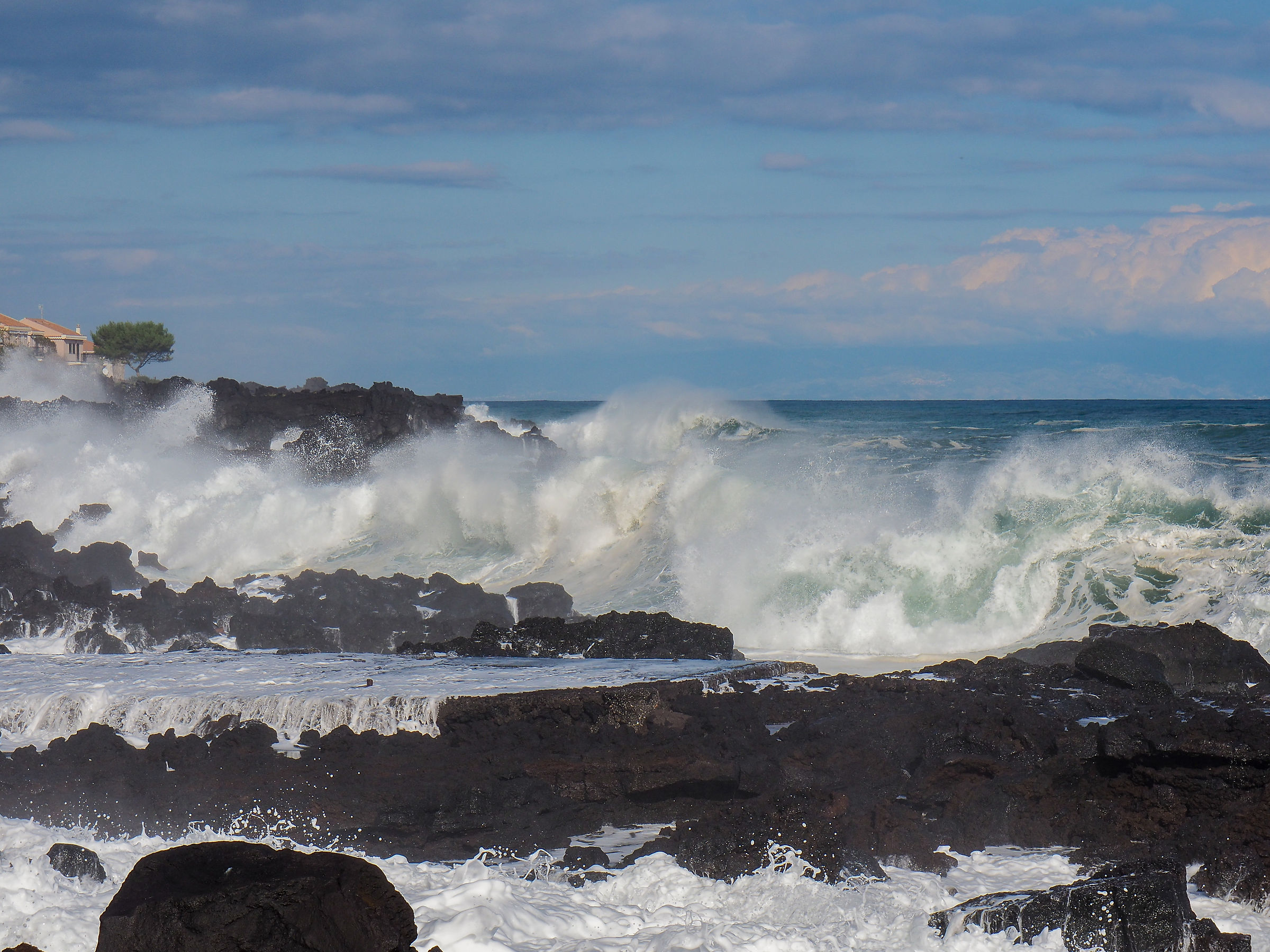 Intent to observe the incessant succession of waves...