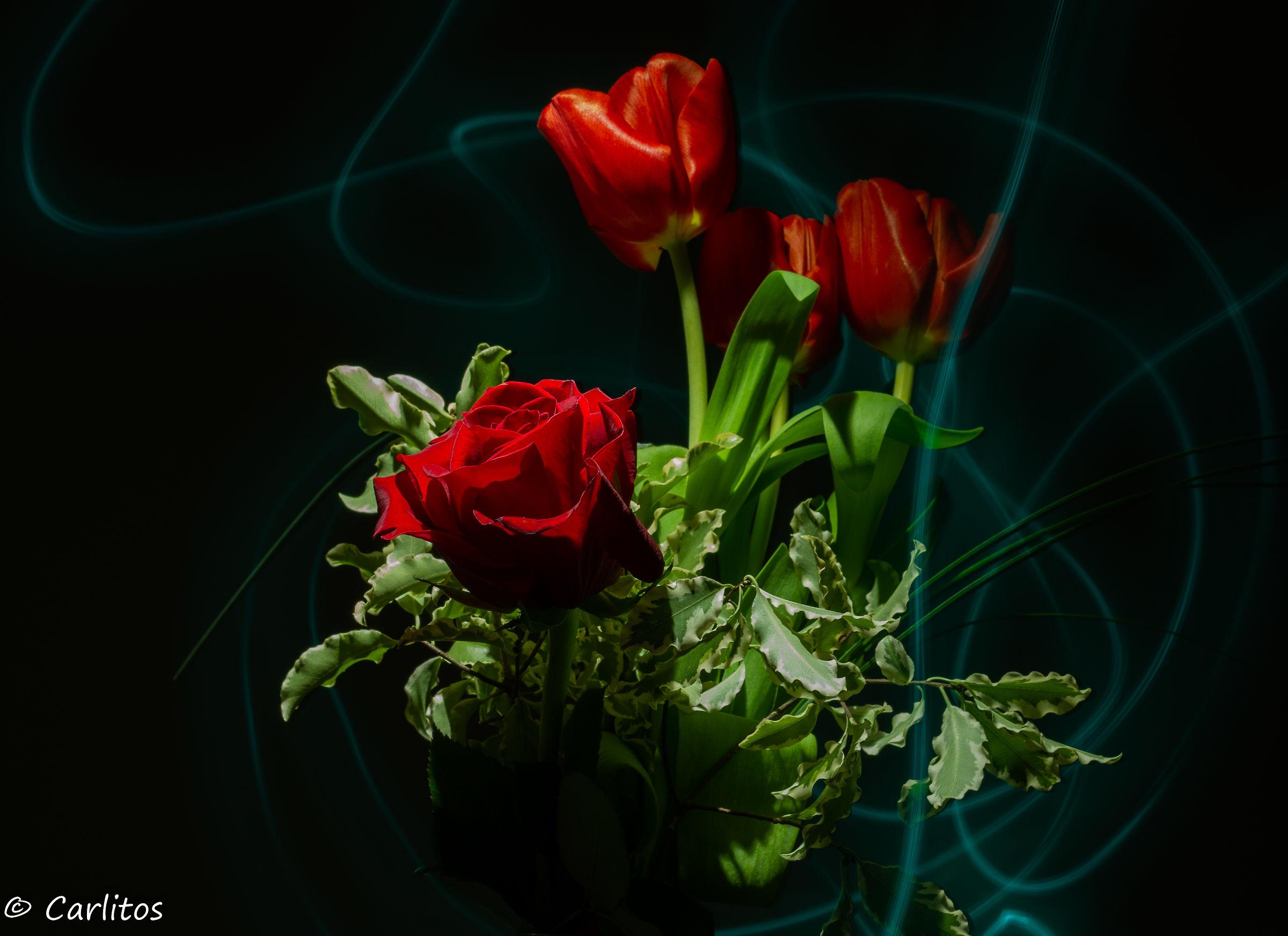Roses & Tulip...