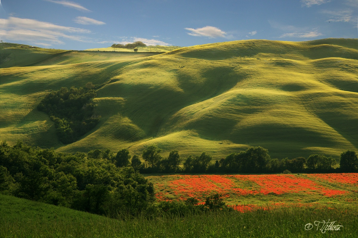 Tuscan valley...