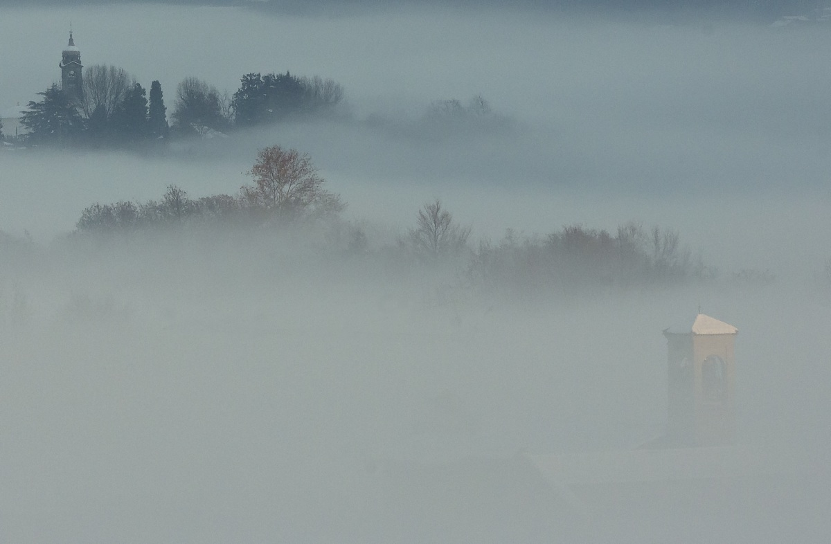 under the fog????????? - Mystery and life....