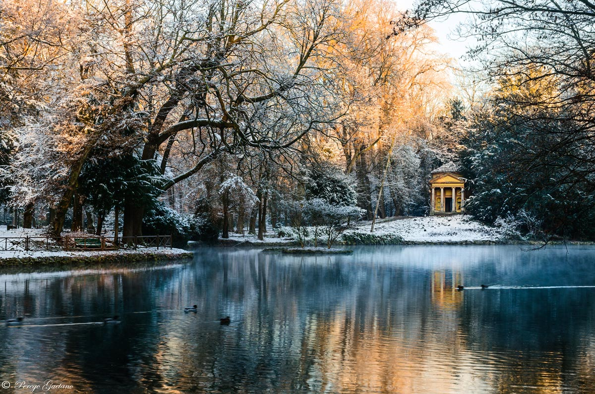 Winter in the park...