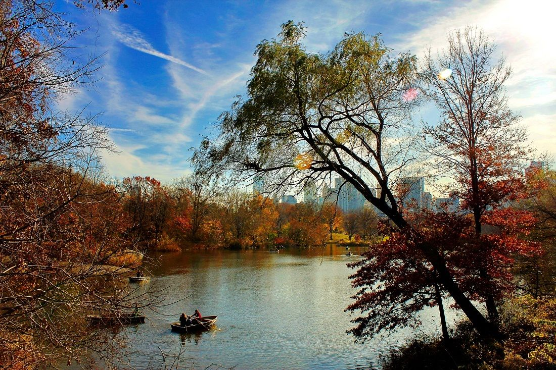 The lake .. Central park...