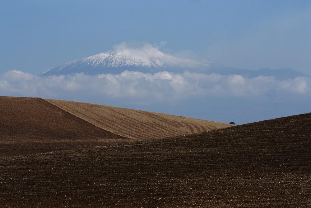 Siciliano Landscape...