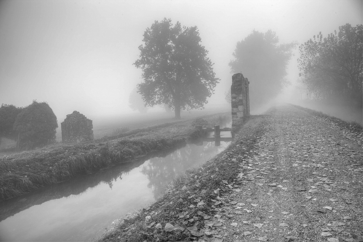 fog down the river...