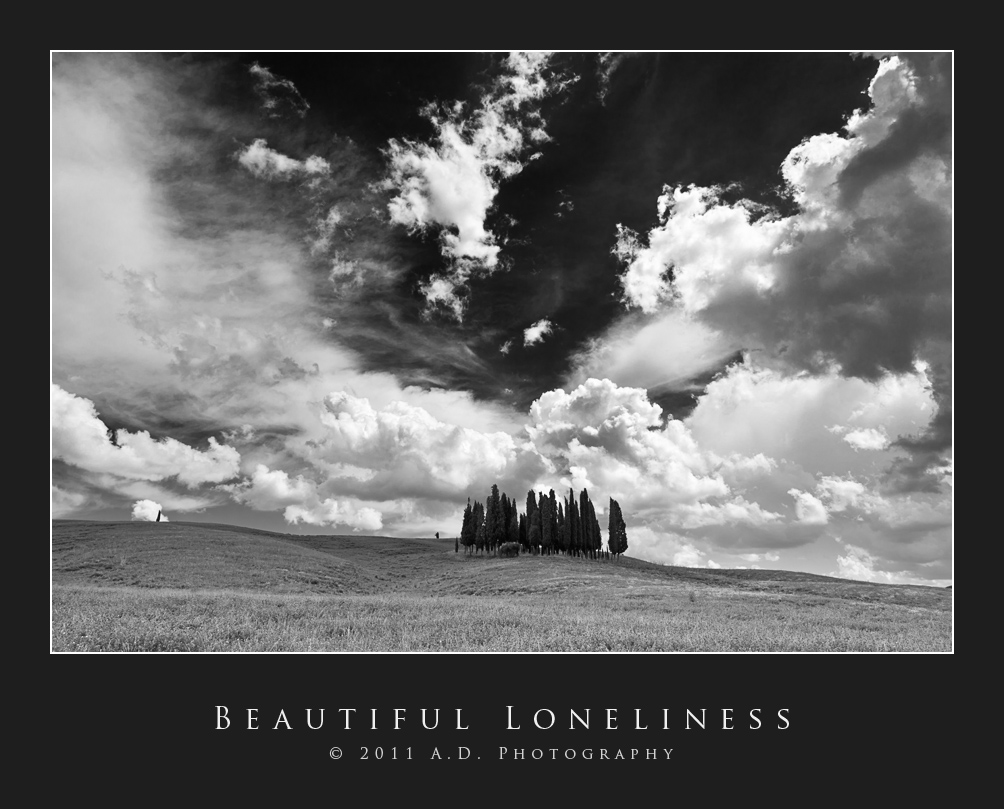 Beautiful Loneliness...