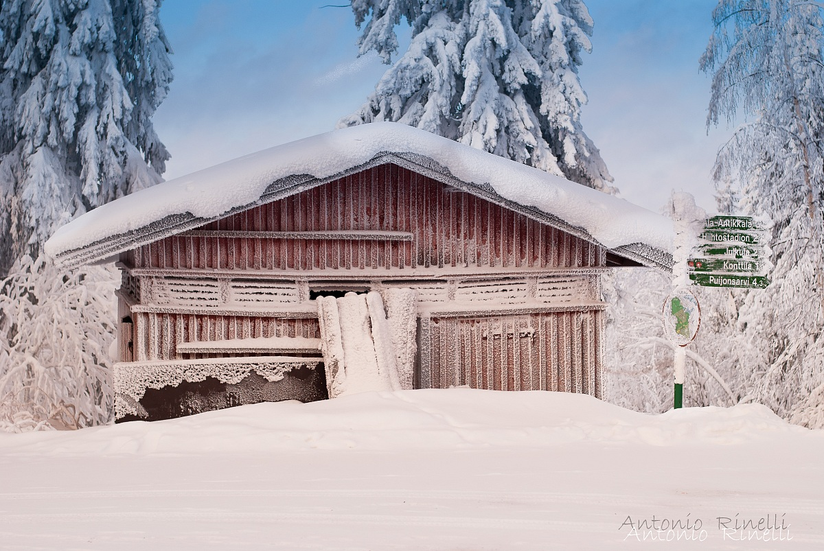 Old snow shelter...