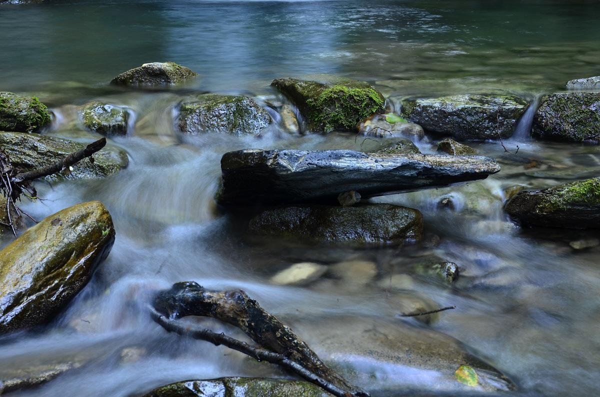 Lake detail Baucin | Liguria | Montegrosso Pian Latt...