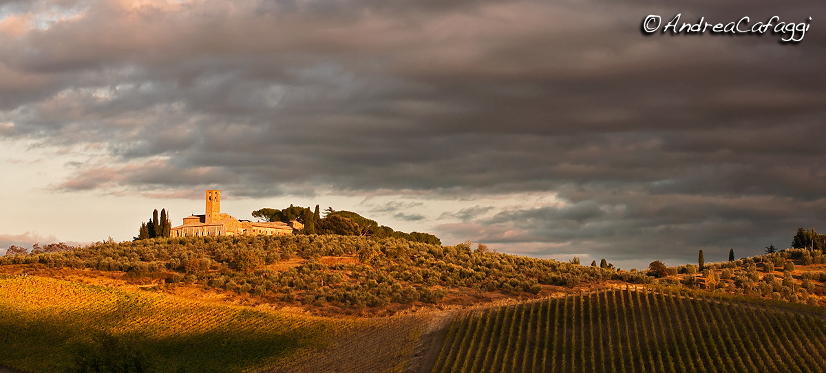Colline a San Gimignano....