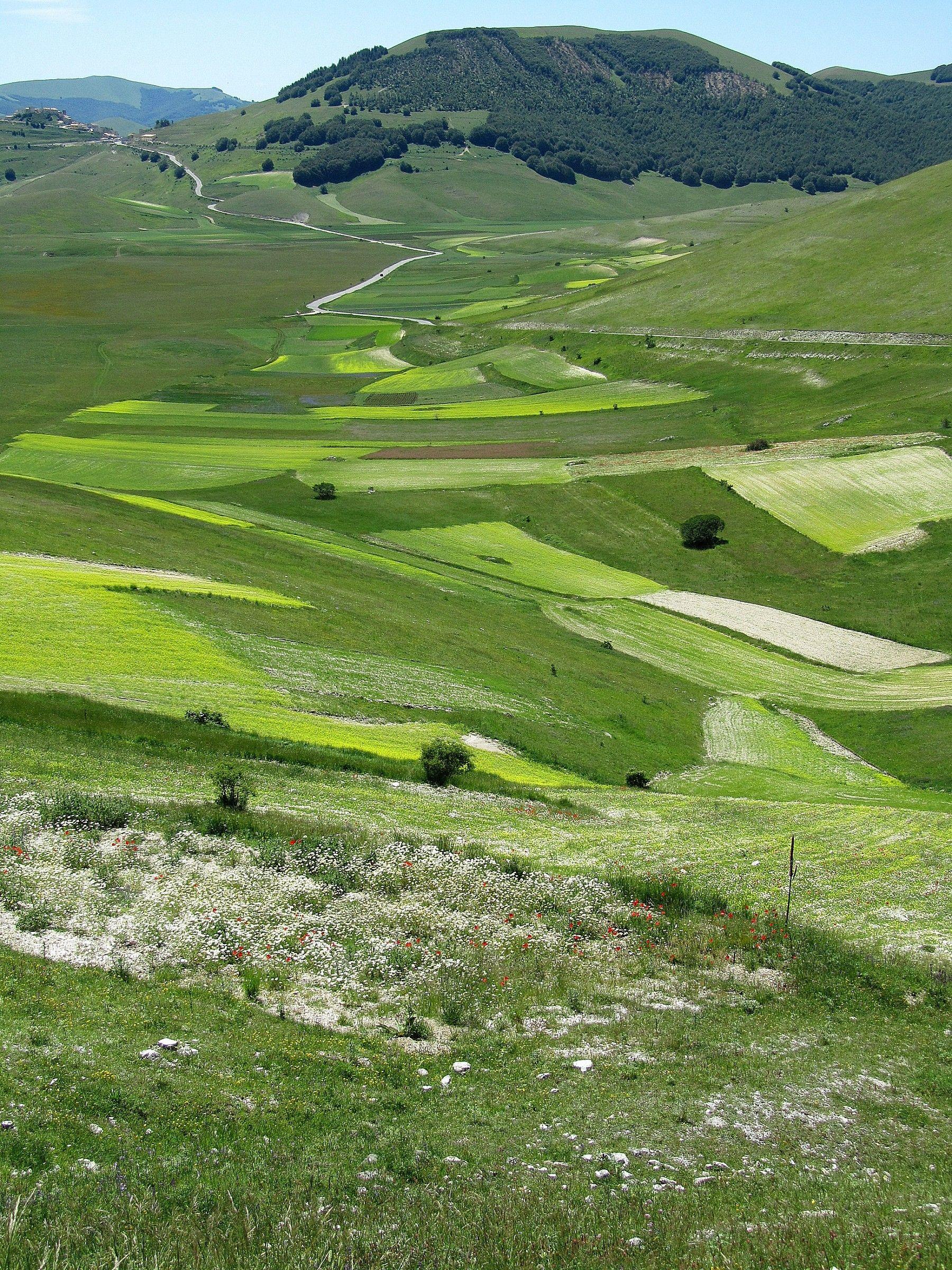 La piana di Castelluccio di Norcia...