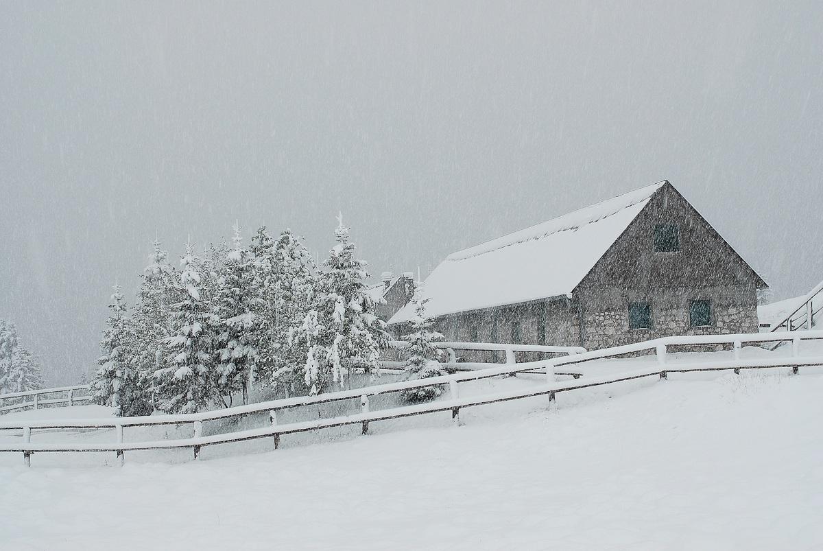 Ultima neve - Piani del Montasio Tarvisio....