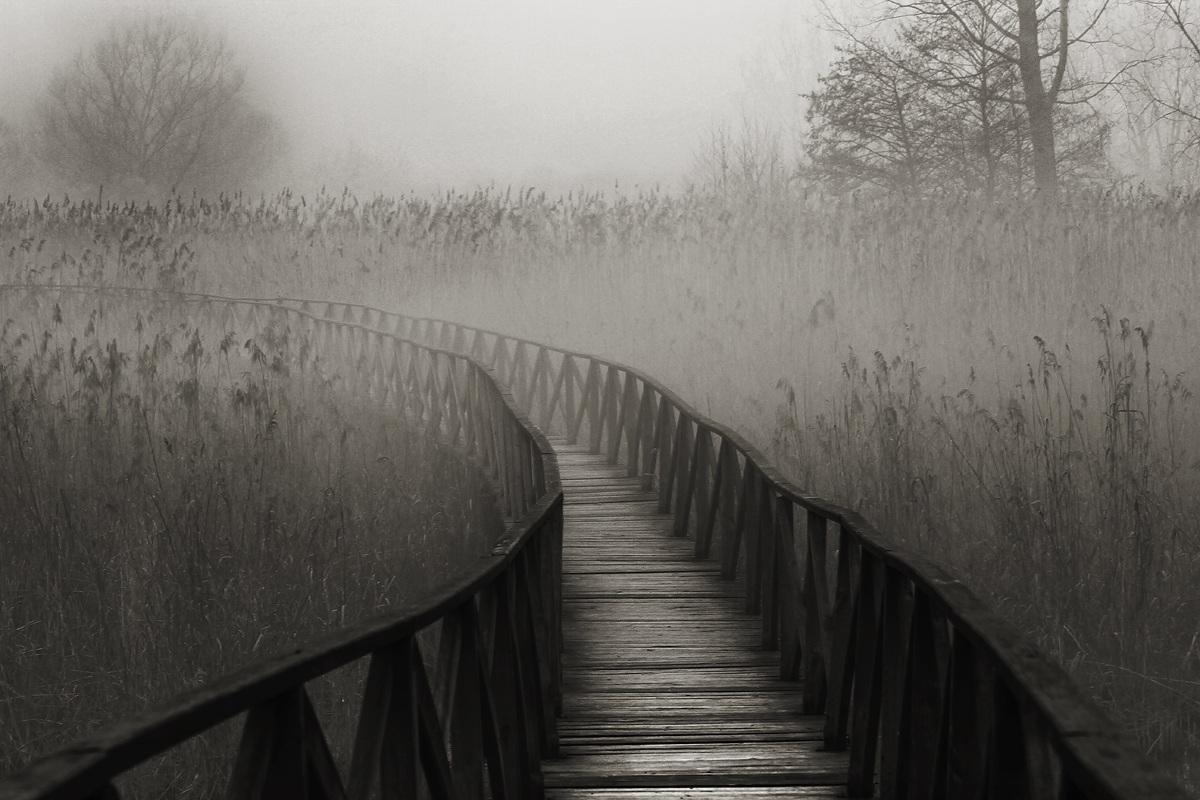 walkway infinite...