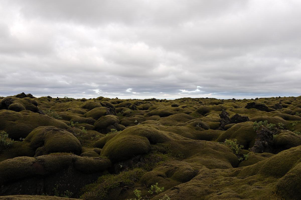 Wonders of Iceland...