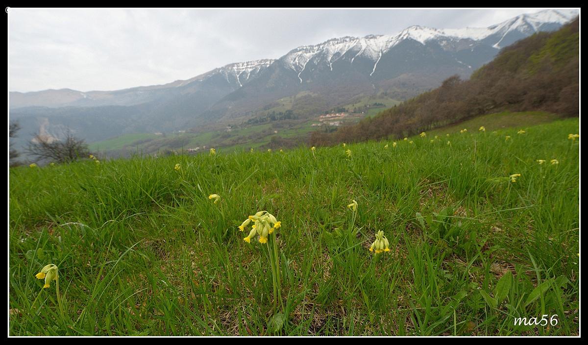 Monte Baldo - Verona...