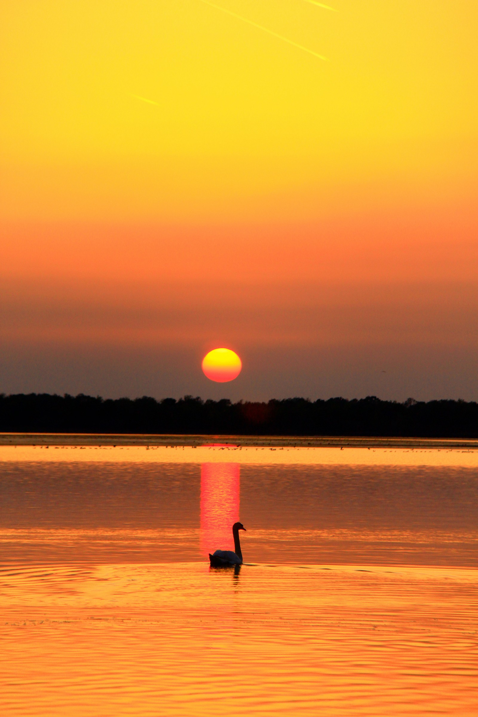 sunset to Bibione 01...