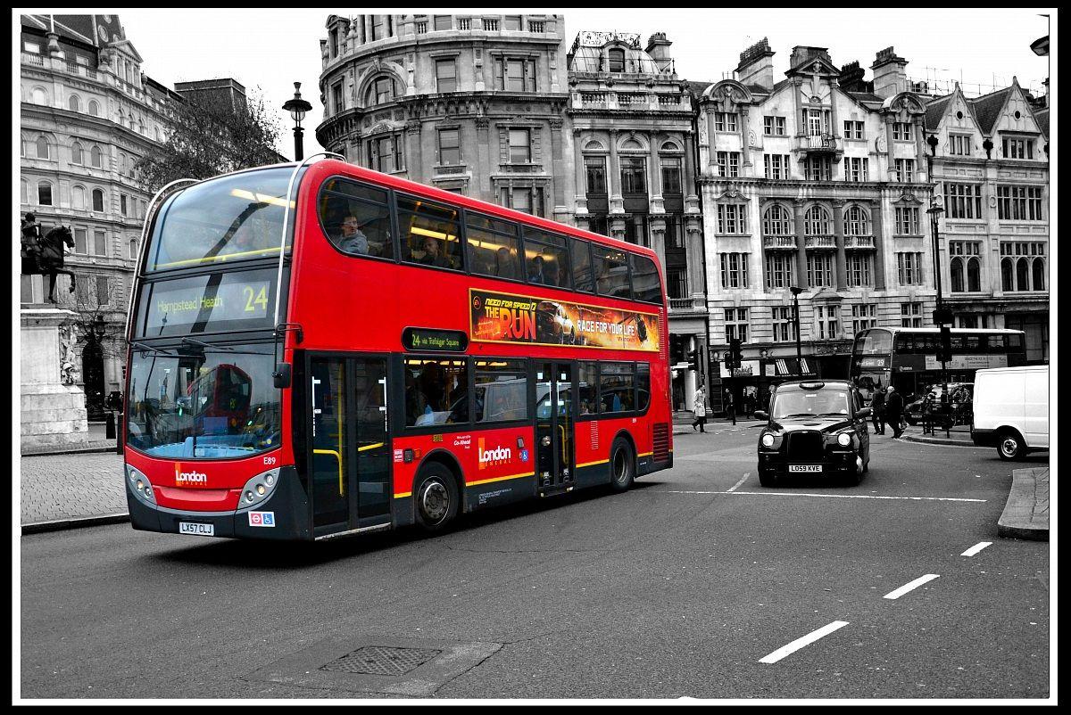 & city bus...