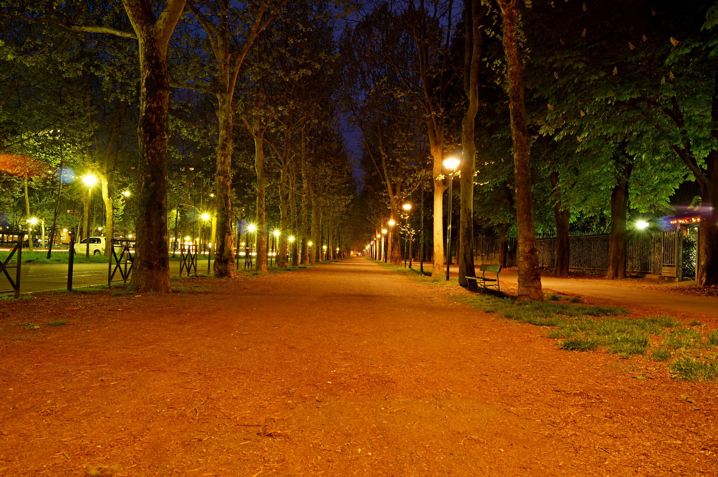 Night road through the park...