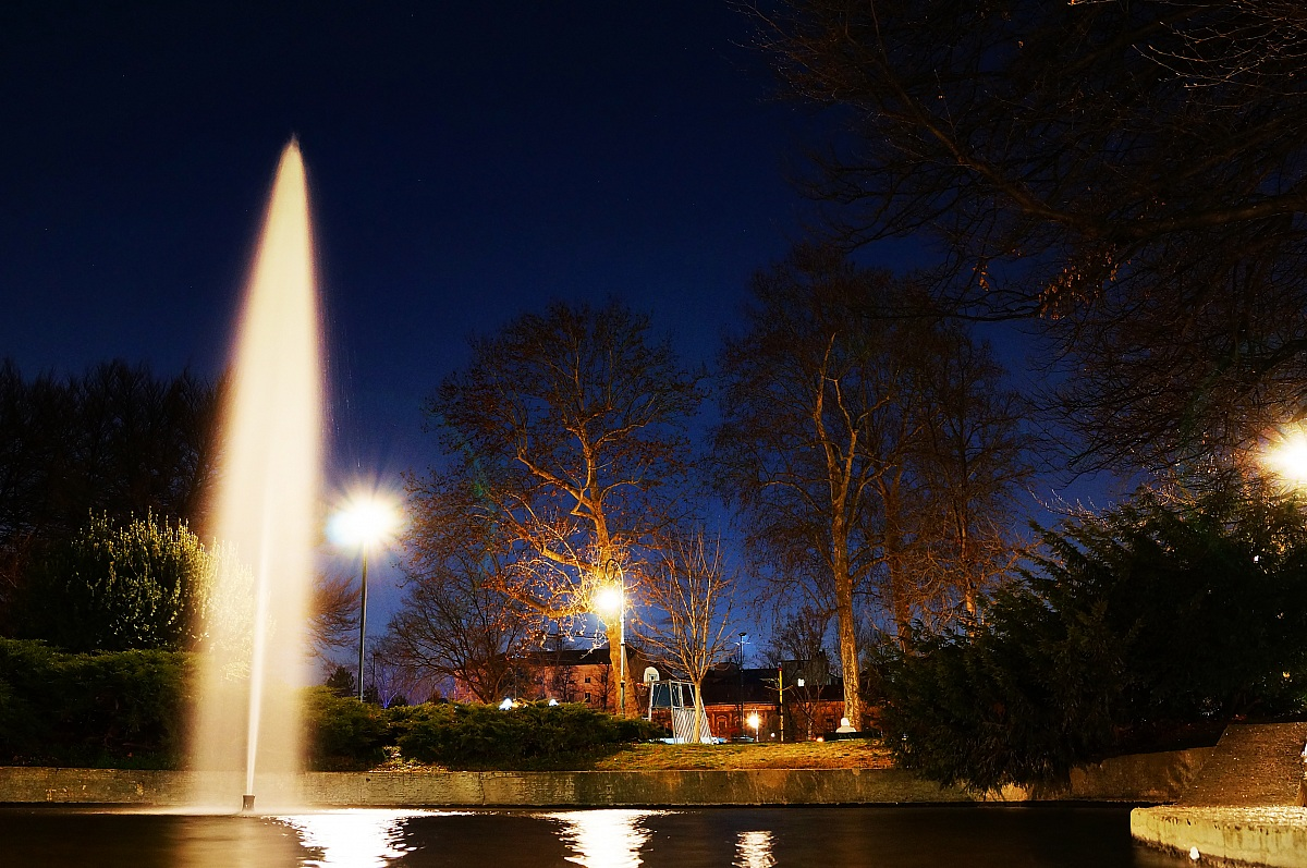 Fontana nel parco Valentino...