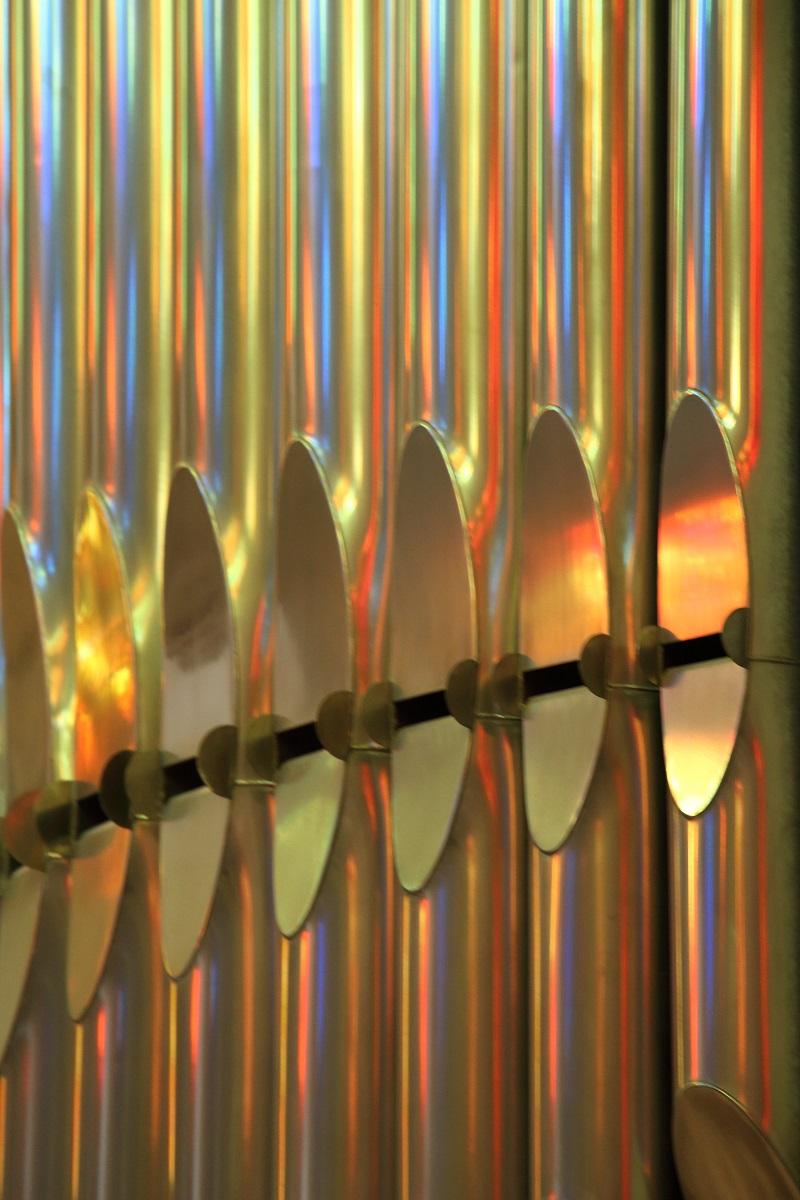 L'organo di mille colori...