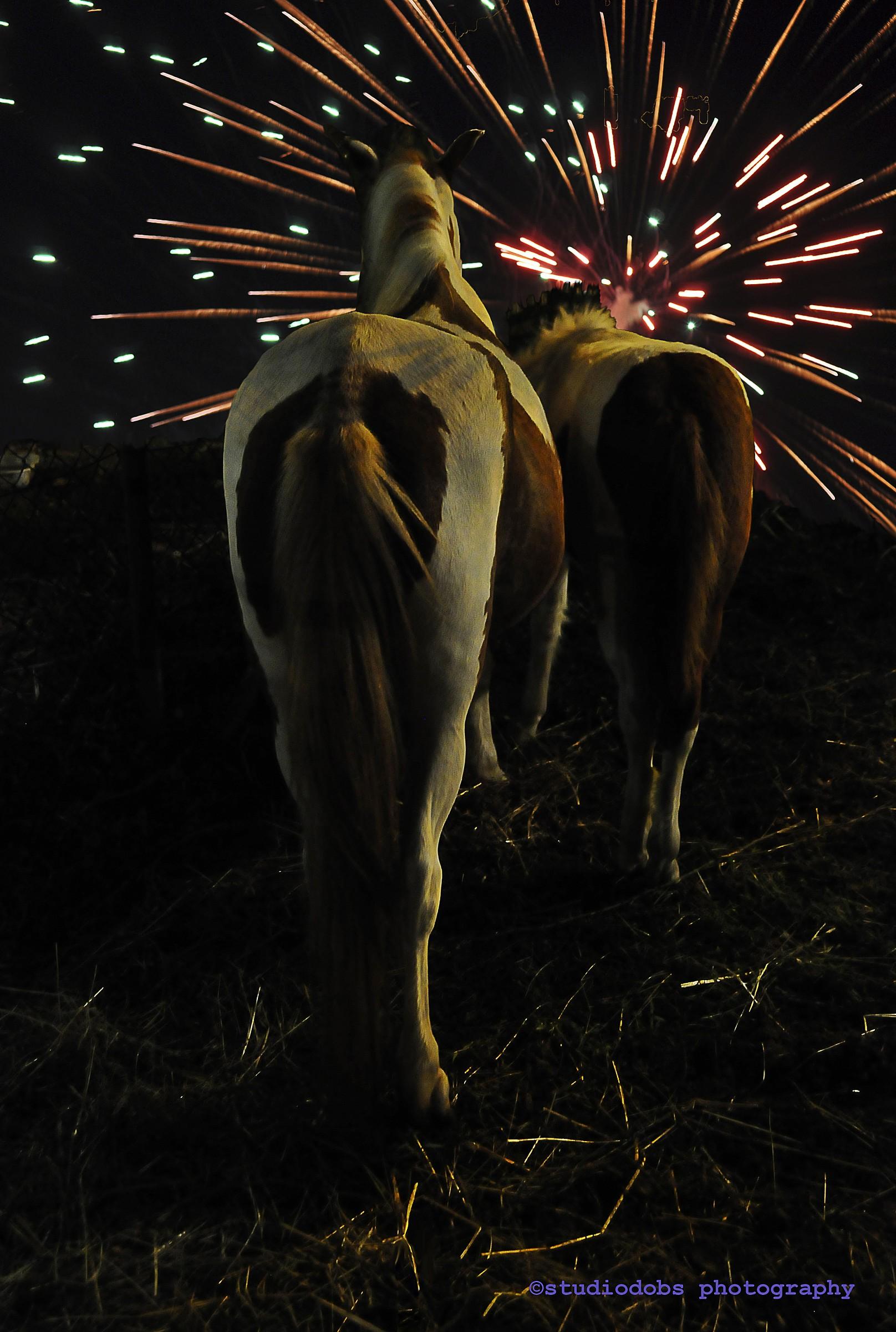 Watching fireworks...