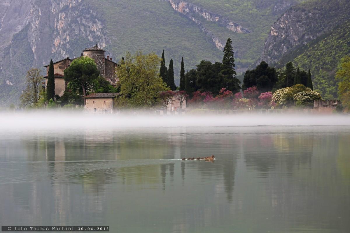 Castel Toblino con foschia e paperelle...