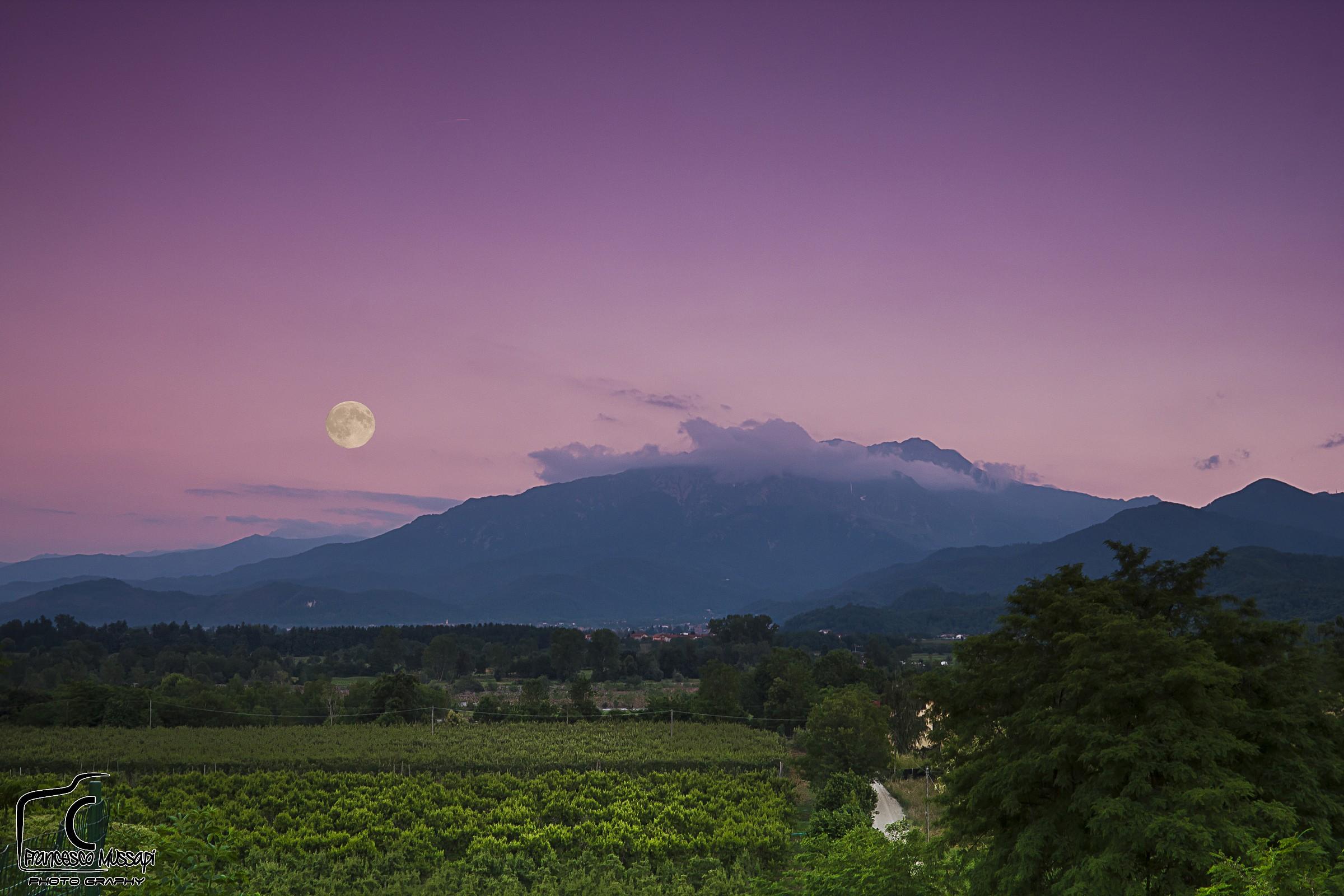 New Moon...