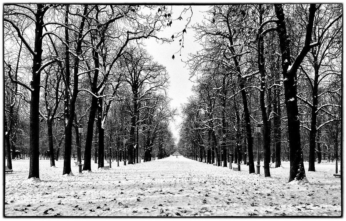 Parco Ducale...