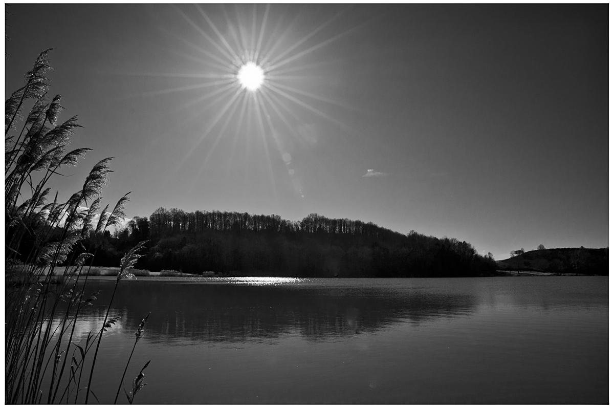 Spiando il sole......