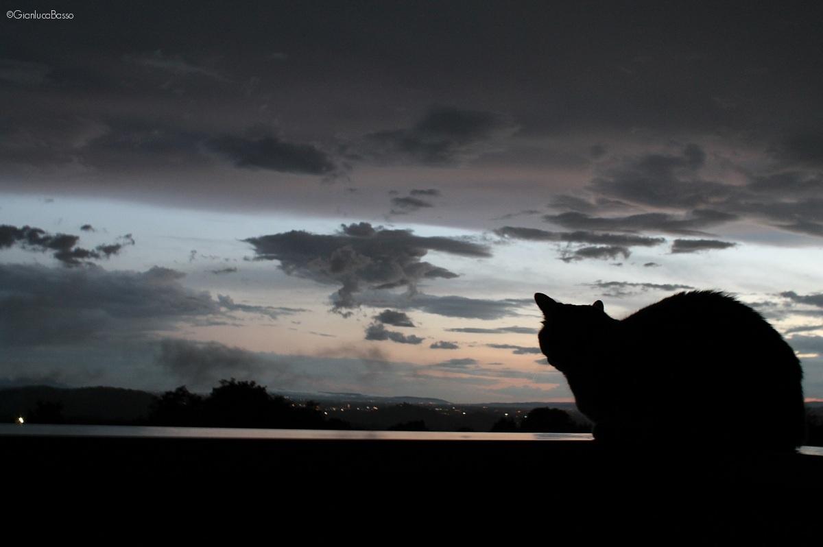 Ammirando la quiete dopo la tempesta...