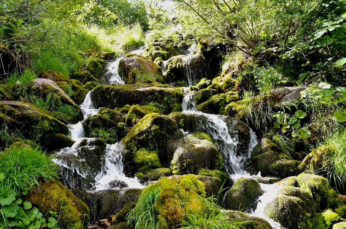 Small mountain stream...