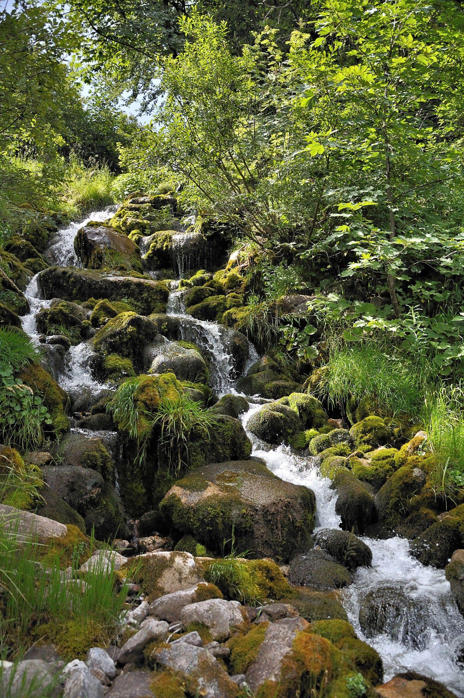 Small stream of montagna2...