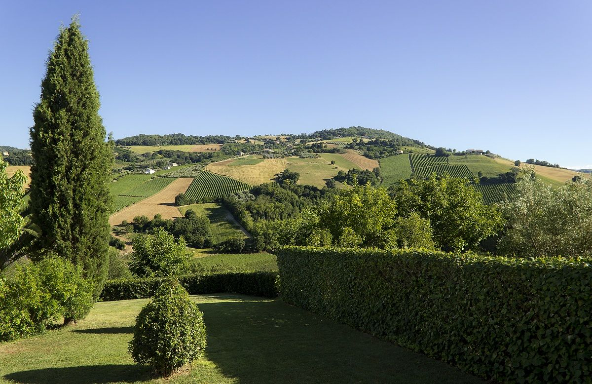 View from La Campana 2.1...