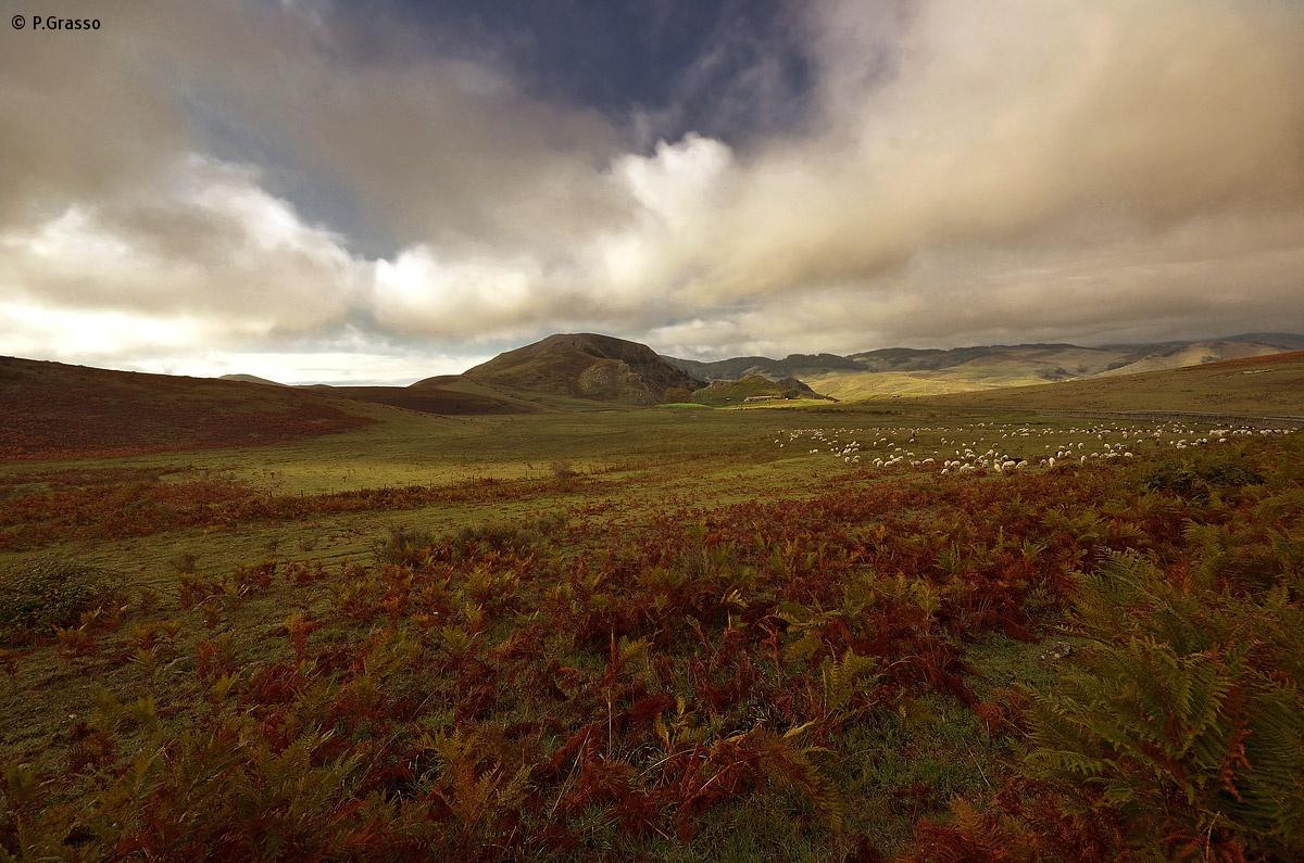 Paesaggio dei Nebrodi (Floresta - Me)...