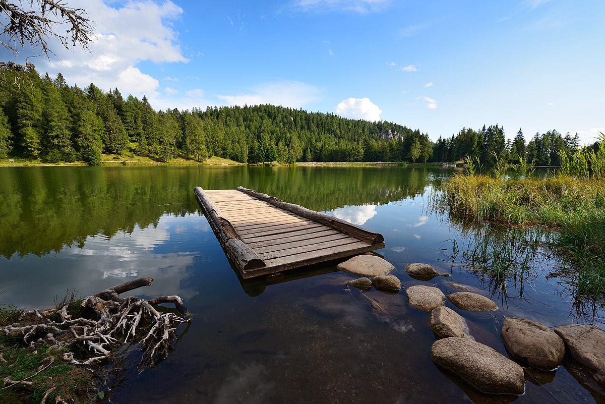 Lake tret...