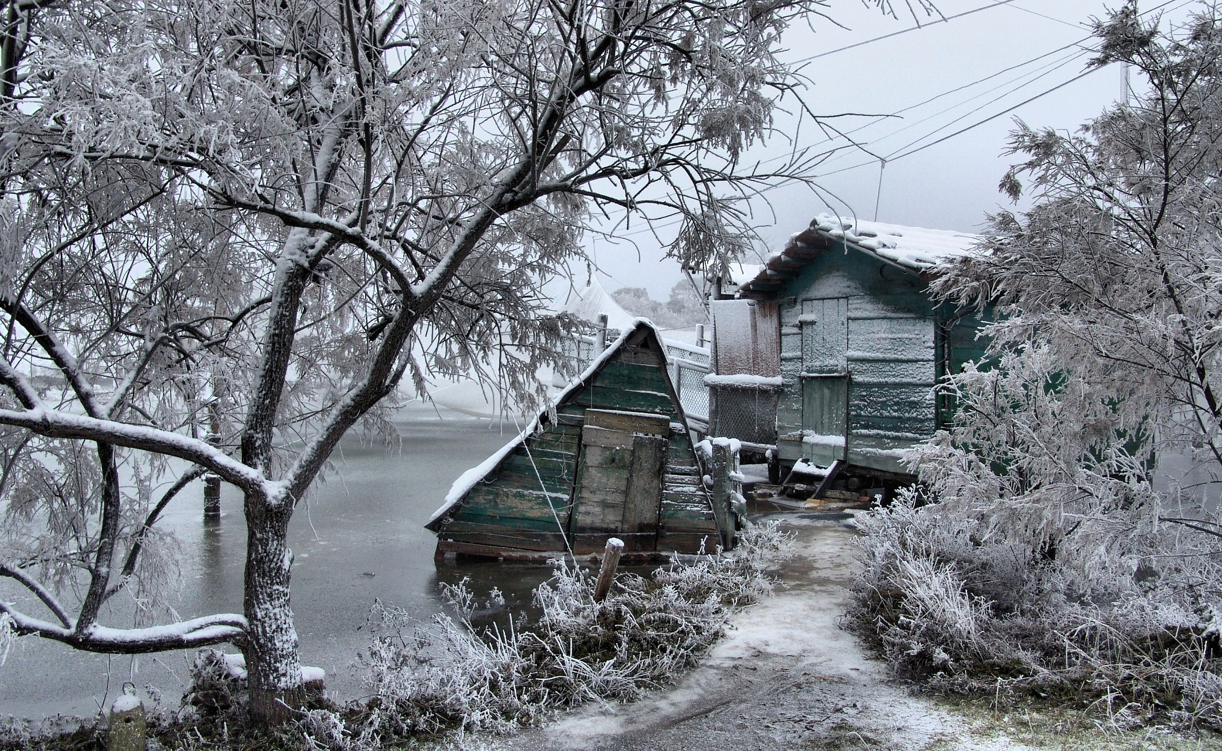 Sheds frost...