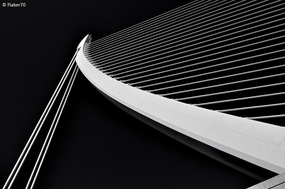 "l '""Harp"" Calatrava Valencia..."