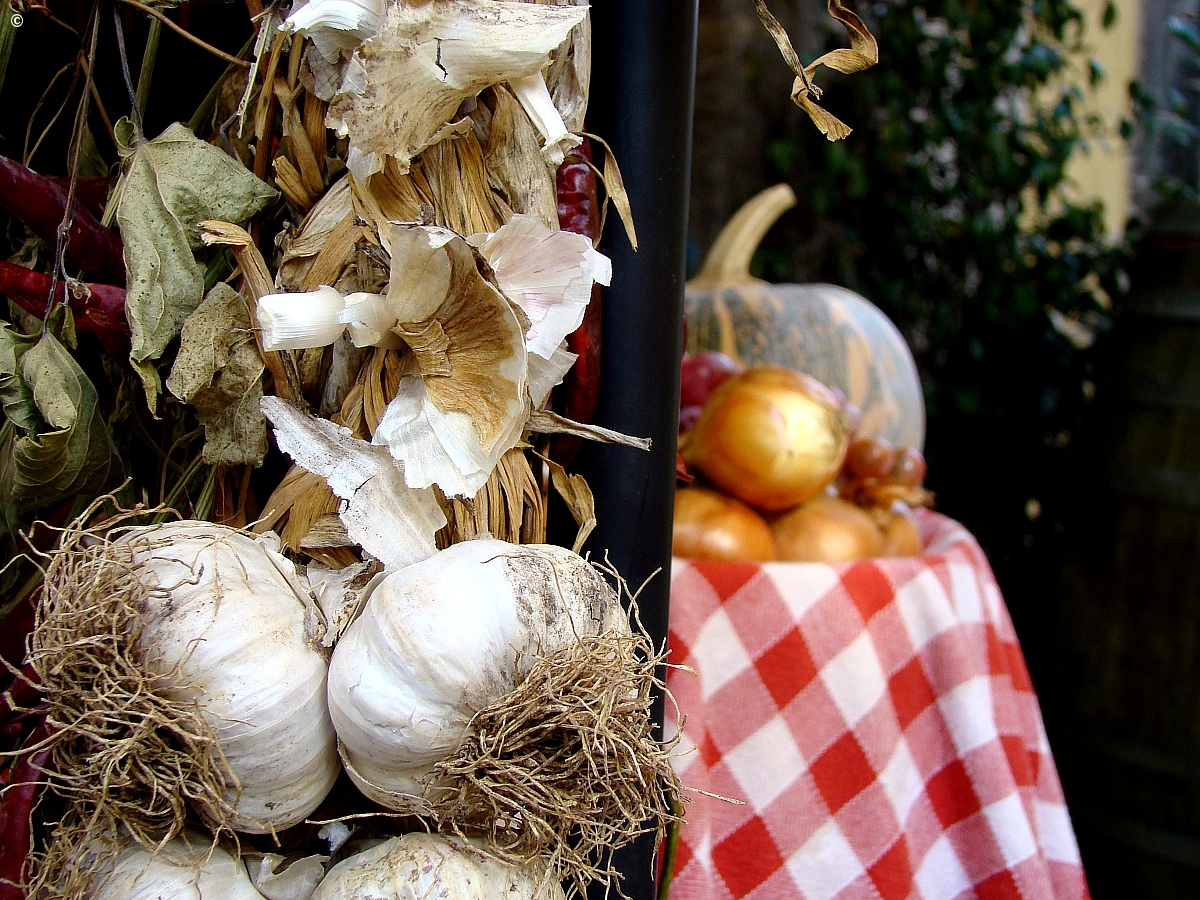 garlic, pumpkins and autumn...