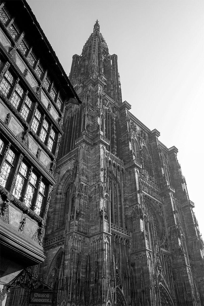 Cattedrale di Strasburgo...