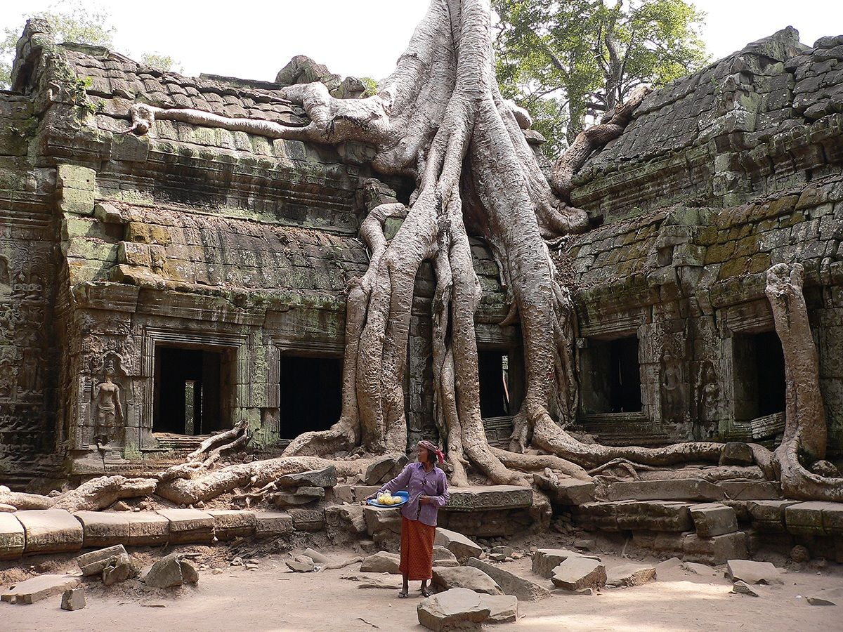 Cambodia - Angkor Ta Prohm...