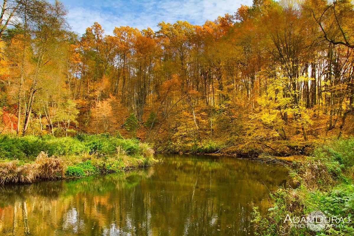 Autumn at river Lyna...