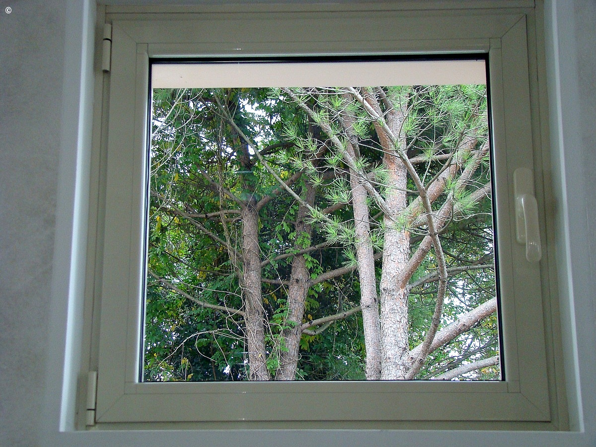 Window or picture?...